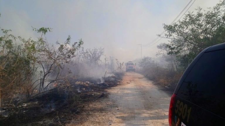 Arrasa incendio con 30 hectáreas de reserva de Yucatán