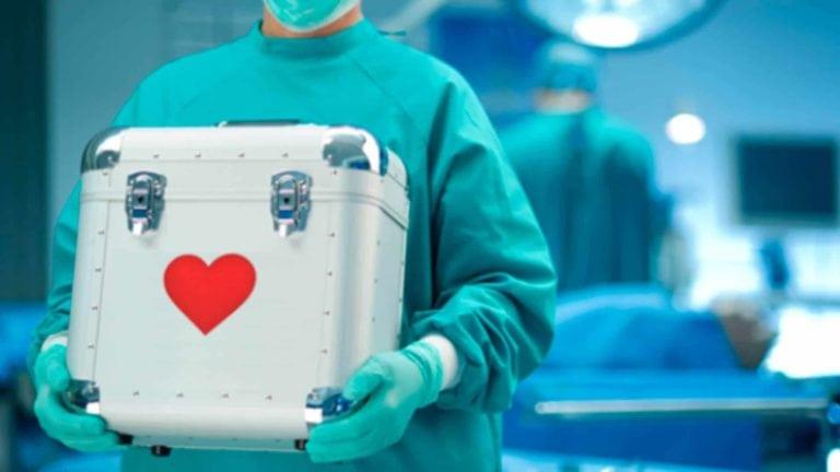 Por ley, todos los islandenses donarán sus órganos